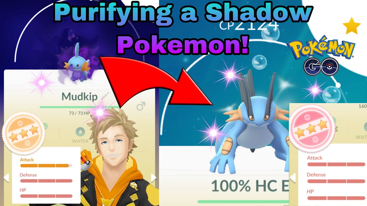 common shadow pokemons